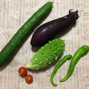 野菜を食べて免疫力アップ❕~2020年コロナの夏~