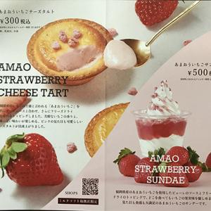BAKE Cheese Tart Ⅱ