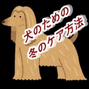 犬が乾燥と寒さを乗り切るために!冬期ケア2選&冬の皮膚に必要な栄養素
