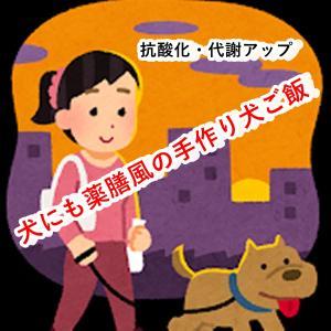 【手作り犬ご飯】犬の体調を整える・薬膳風手作り犬ご飯!冬こそ抗酸化