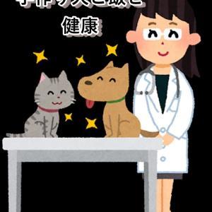 手作り犬ご飯で犬が長生きするの?獣医師が書いた「長生き犬ご飯」の本