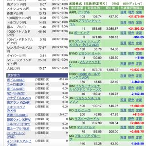 SBI証券 損益状況