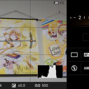 【Xperia 1 IIレビュー】ついに実装されたプロカメラアプリ「Photography Pro」の気になる部分をチェック!