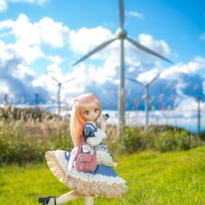 風力発電機が見える丘で、ドール撮影(*^^*)