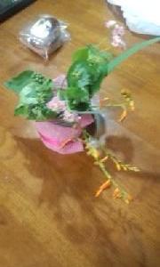 庭の花を切り花として卓上に飾って