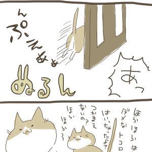 すり抜けるネコチャン