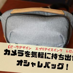 【ピークデザイン エブリデイスイング レビュー】カメラを気軽に持ち出せるオシャレバッグ!