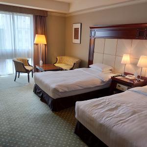 さぁ!サッポロ夏割で泊まってみた~プレミアホテル-TSUBAKI-札幌~でステイケーション GoToトラベルキャンペーンも併用出来る!
