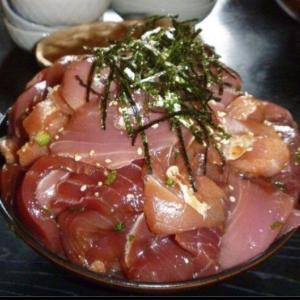 【和歌山県県】那智勝浦に生マグロを食べに行こうツーリング