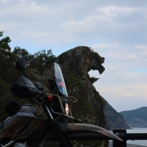 【三重県】新種クマノサクラを見たい!国道42号線沿いを巡るツーリング
