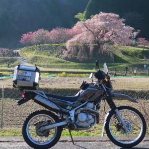 【奈良県】桜を一筆書きで巡るツーリング