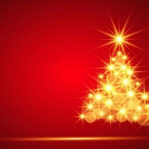 ウチもクリスマスツリーを飾りました。