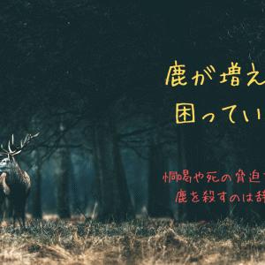 市が鹿を殺す決断を覆した理由。