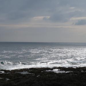 戦後75周年「2020年バシー海峡戦没者慰霊祭」の日程が決定、来年は8月2日(日)に斎行