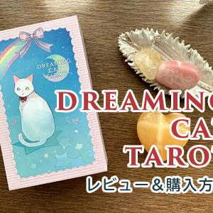 ドリーミングキャットタロット紹介と購入手順|Dreaming Cat Tarot