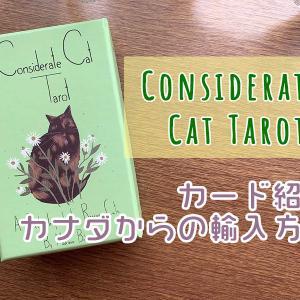 Considerate Cat Tarotの購入方法(2021年1月最新版)
