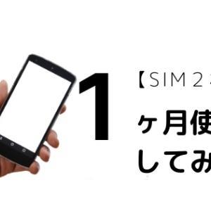 【SIM2枚持ち】1ヶ月使用してみた