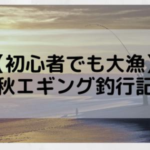 【初心者でも大漁】秋エギング釣行記
