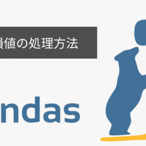 【Pandas】欠損値(NaN)の処理方法について