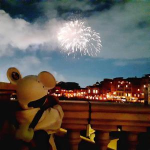 ハーバーの夜を彩るロマンチックな花火