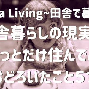 田舎暮らしの現実!?住んでみて、おどろいたこと【Inaka Living〜田舎で暮らす〜】