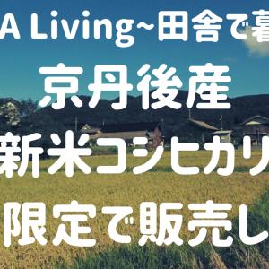 京丹後産の新米コシヒカリを期間限定で販売します!【INAKA Living〜田舎で暮らす〜】