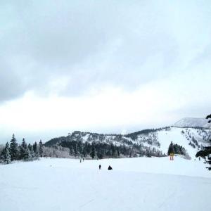 【志賀高原スキー場】国内最大級のスキーユナイテッド/長野県にあるスキーリゾートとは?
