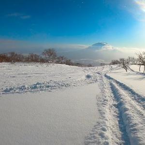 2020年も上質な雪質/暖冬・雪不足は関係ない北海道ニセコのゲレンデ情報/2月中下旬までは世界最高峰の雪の聖地