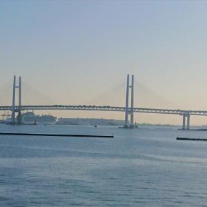 話題の横浜港周辺に何がある?花と景色と私のベスト3