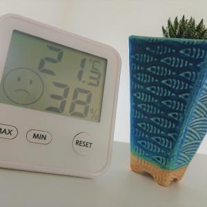 寒い日本の冬、多肉植物を育てるお助けアイテムに頼ってみる