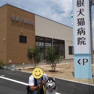新しい動物病院