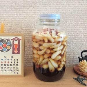 『季節の手仕事』らっきょうの甘酢漬け