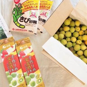 『季節の手仕事』オーガニック、農薬・化学肥料不使用の青梅で日本酒梅酒を作る。