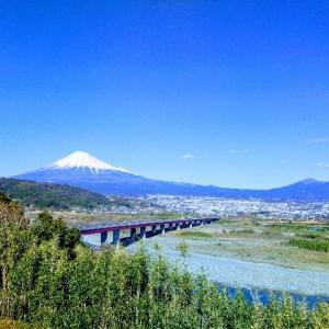 なんでも🤔静岡は地方移住希望地の上位らしい