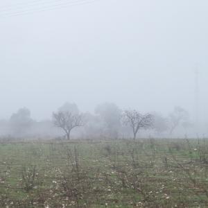 霧のプーリア