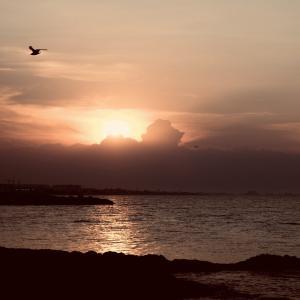 プーリアの海 (夕景)