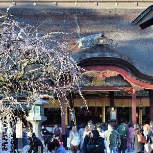 太宰府天満宮にあるラーメン屋と周辺のおすすめを一緒に紹介