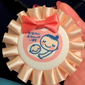 マタニティ日記④ 妊娠9週 いざ産院の分娩予約合戦に挑む