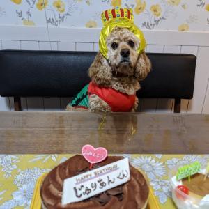 わんこのお誕生日おめでとう!