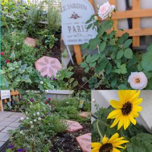 私の小さい庭!