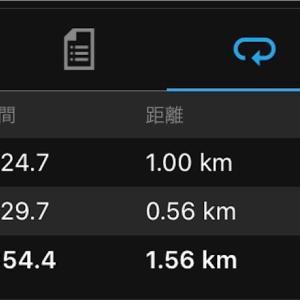 明日は水戸黄門漫遊マラソン!