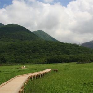大自然を見ながら散策を楽しむ!タデ原湿原