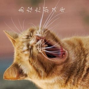 BLss「猫に懐かれないあなたがスキ」表紙