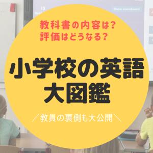 小学校英語の教科書内容や評価は?教員の裏側教えます【2020年】