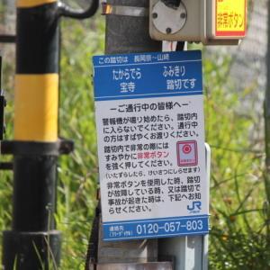 JR西日本、宝寺踏切で撮る 長岡京ー山崎 EF510 504