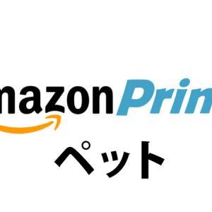 [Amazonプライム・ペット]登録すべき?必要ない?本当にお得?