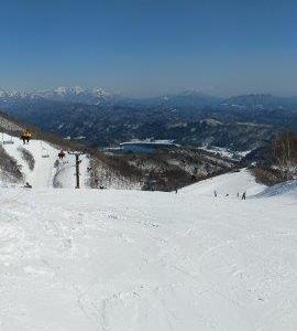 【育児】子供の初スキーはレッスンを受けた方が良い理由とその注意点