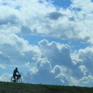 【日常生活】自転車で帰宅中にて検問された時、逆に交通規則について色々聞いてみた