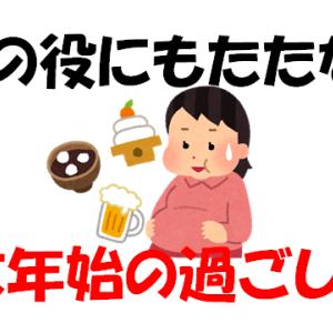 ぷんぷん的、年末年始の過ごし方!(非常に雑ver)