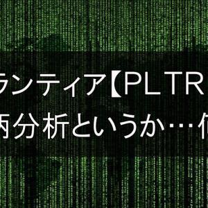Palantir【PLTR】 銘柄分析というか…何?